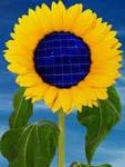 pannelli solari fotovoltaici per l'imprenditore agricolo