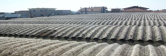 Bonifica di amianto - eternit - Pieve a Nievole - Pistoia - Toscana <br>                    Superficie bonificata: 1.700 mq - Prima dell'intervento